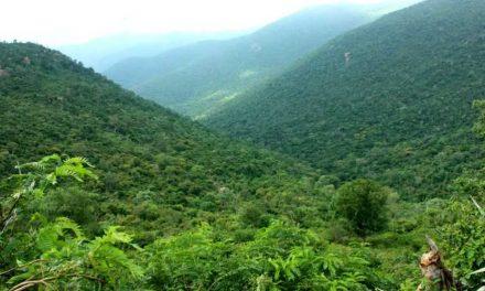 Mahadeshwara Hills