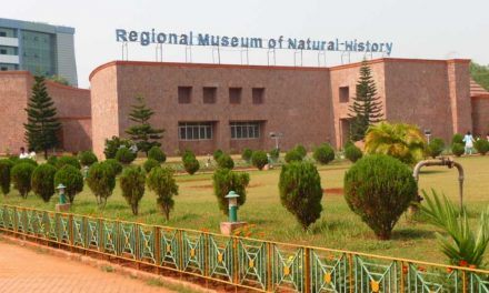 Regional Museum of National History