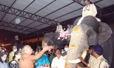 Forest Minister Offers Puja To Dasara Jumbos
